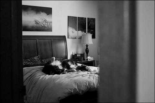 A peek inside my bedroom 8O