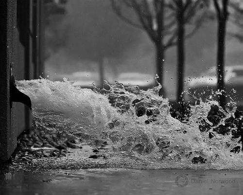 (019/365) Rain, rain go away