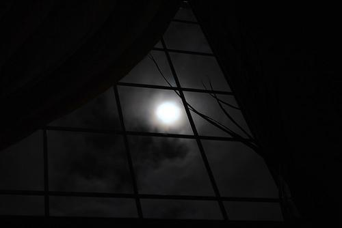 The Moon Window